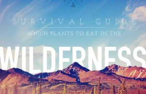 WildernessSurvivalGuide-620x400