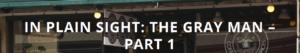 FireShot Screen Capture #094 - 'In Plain Sight_ The Gray Man - Part 1 - MOTUS' - motusworld_com_2015_12_in-plain-sight-the-gray-man-part-1