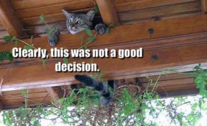 how-to-make-good-decisions