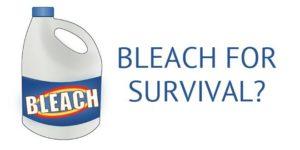 bleach-survival-logo